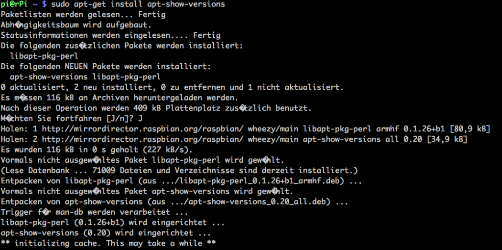 apt-get install apt-show-versions